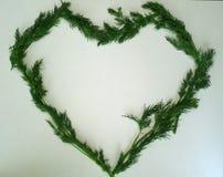Coração de um grupo do aneto em um fundo branco fotos de stock