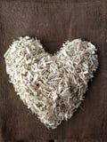 Coração do cânhamo Imagem de Stock