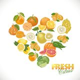 coração do citrino em um fundo branco ilustração royalty free