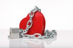 Coração do coração dois Fotos de Stock