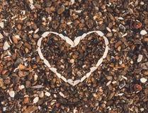 Coração do fundo das conchas do mar imagem de stock royalty free