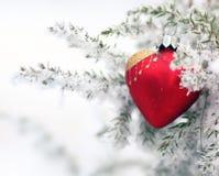 Coração do gelo do inverno Imagens de Stock