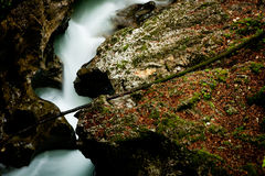 Coração do rio foto de stock
