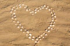 Coração do Seashell Fotografia de Stock Royalty Free