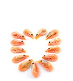 Coração dos camarões Imagens de Stock