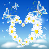 Coração e borboletas da margarida ilustração stock