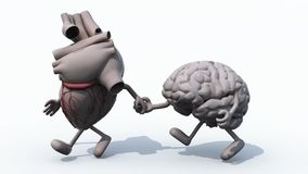 Coração e cérebro humanos que andam em conjunto vídeos de arquivo