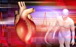 Coração e corpo humano Imagens de Stock Royalty Free