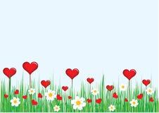 Coração e flores Imagens de Stock
