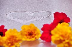 Coração e flores no vidro molhado Fotografia de Stock
