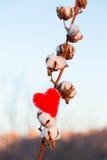 Coração e gossypium vermelhos de matéria têxtil Foto de Stock Royalty Free