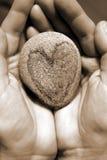 Coração e Hands1 Fotos de Stock