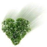 Coração em um céu do fundo Fotografia de Stock