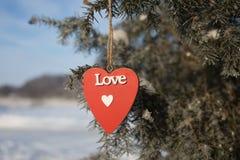Coração em um ramo Fotos de Stock Royalty Free