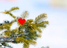 Coração em uma árvore de Natal do ramo do inverno foto de stock