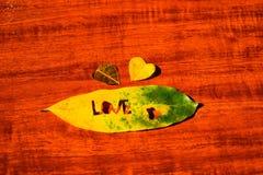 Coração em uma folha do outono em um fundo de madeira grained Fotos de Stock