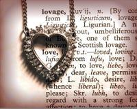 Coração enchido amor Foto de Stock