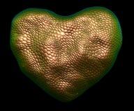 Coração feito da textura natural da pele de serpente do ouro isolada no preto 3d ilustração stock