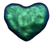 Coração feito da textura natural da pele de serpente verde isolada no branco 3d ilustração stock
