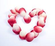 Coração feito das pétalas cor-de-rosa Fotografia de Stock Royalty Free