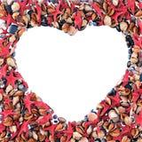 Coração feito de escudos do mar Foto de Stock