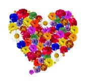 Coração feito de flores frescas bonitas Fotografia de Stock Royalty Free