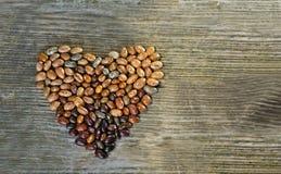 Coração feito dos feijões Fotos de Stock