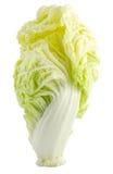 Coração friável fresco da alface Fotografia de Stock
