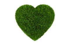 Coração gramíneo isolado Fotografia de Stock Royalty Free