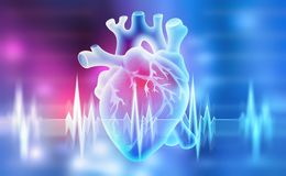 Coração humano ilustração 3D em um fundo médico ilustração do vetor
