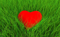 Coração na grama Imagens de Stock Royalty Free