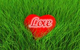 Coração na grama Fotos de Stock Royalty Free