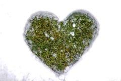 Coração na neve Fotografia de Stock