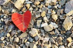 Coração na pedra Fotos de Stock Royalty Free