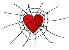 Coração na Web no fundo branco Imagem de Stock