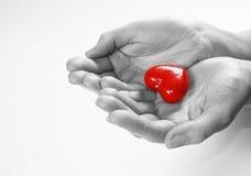 Coração nas mãos Imagens de Stock
