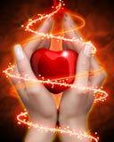 Coração nas mãos Imagem de Stock