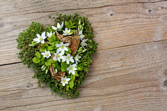 Coração natural fotografia de stock