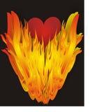 Coração no incêndio - vetor ilustração stock