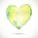 Coração-orgânico-verde Fotos de Stock
