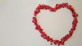 Coração Patals no fundo branco Foto de Stock Royalty Free