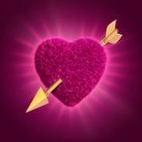 Coração peludo cor-de-rosa perfurado com seta do ouro Foto de Stock Royalty Free