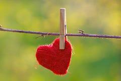 Coração pendurado Imagem de Stock Royalty Free