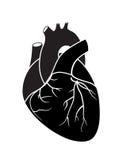 Coração preto Imagem de Stock