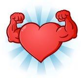 Coração que dobra o personagem de banda desenhada dos músculos Imagem de Stock