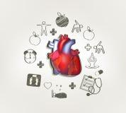 Coração saudável ilustração royalty free