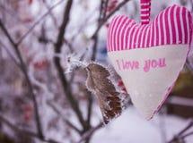 Coração sob a forma dos descansos Foto de Stock Royalty Free