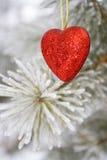 Coração solitário Fotografia de Stock