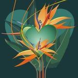 Coração tropico Imagens de Stock