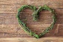 Coração verde Fotografia de Stock Royalty Free